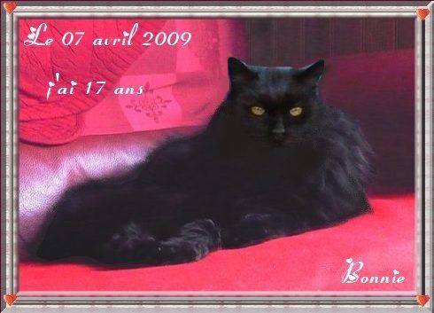 Bonnie 17 ans