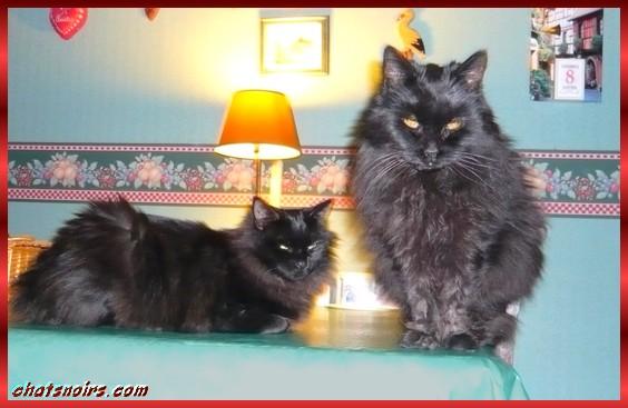 Bonnie et Jules janv2010