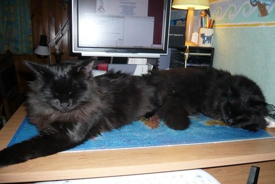 Bonnie et Jules 26-12-09