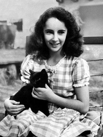 Elizabeth Taylor et chat noir