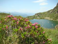 L'étang d'Appy - 1734 mètres (Ariège)