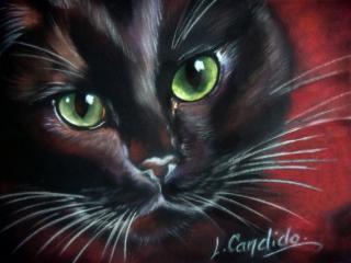 Laurence Candido