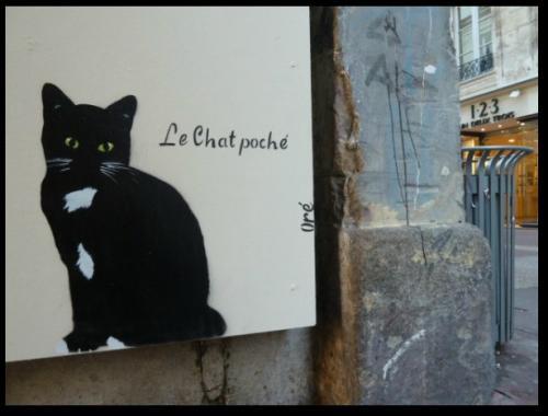 Le chat poché - graff  Oré - Caen