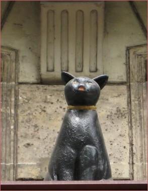 Chat noir Paris 1er ar