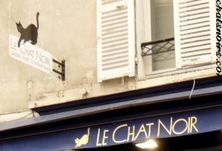 Chat noir Paris 18
