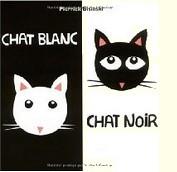 Chat noir chat blanc