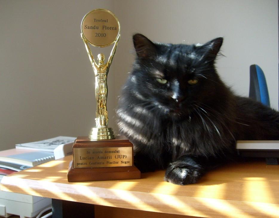 Smouckie - Confrérie des chats noirs