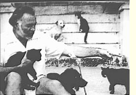 Ernest Hemingway et ses chats(chat noir)