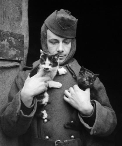 Soldat chaton noir - 1940